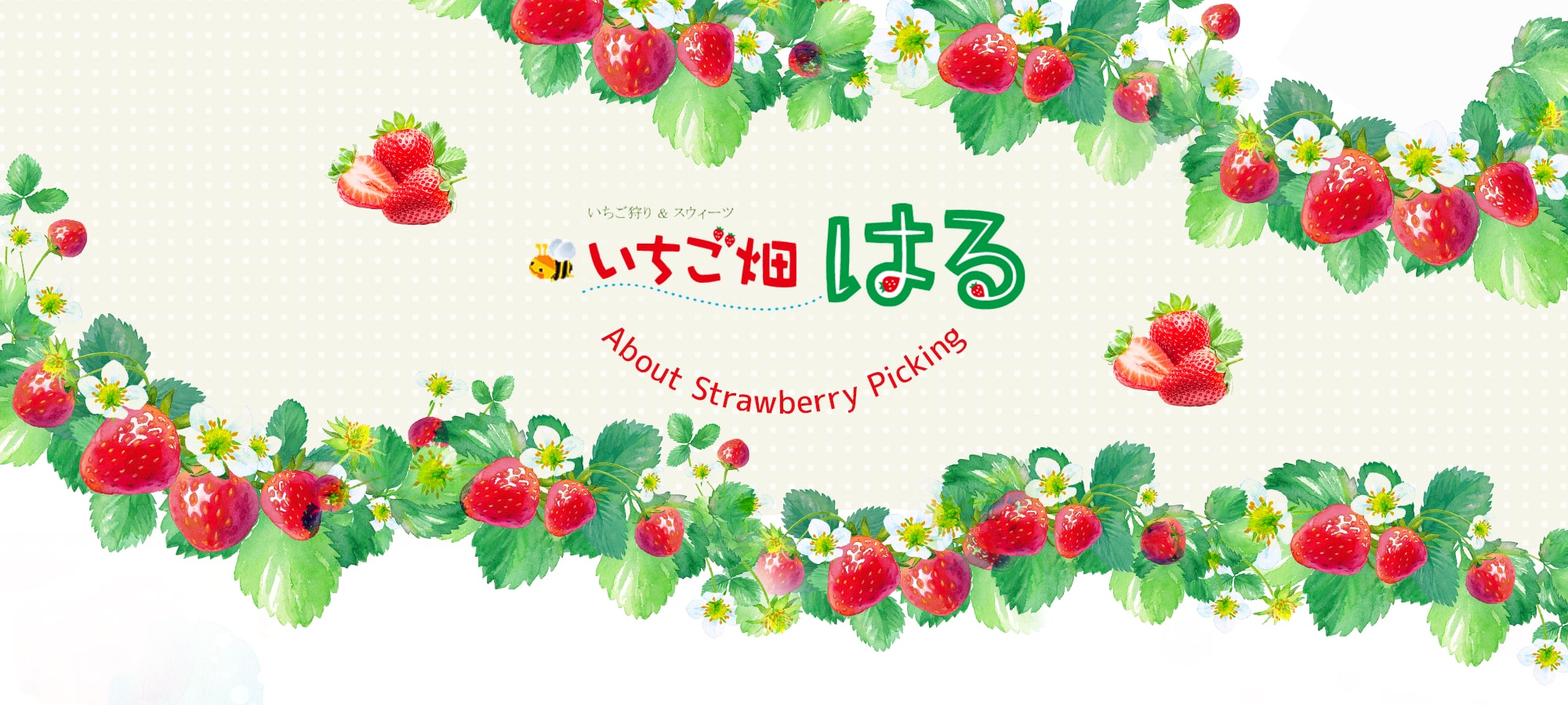About Strawberry Picking