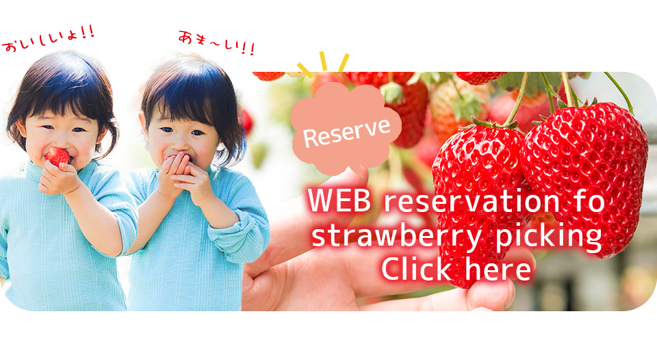 RESERVE WEB reservation fo strawberry picking Click here
